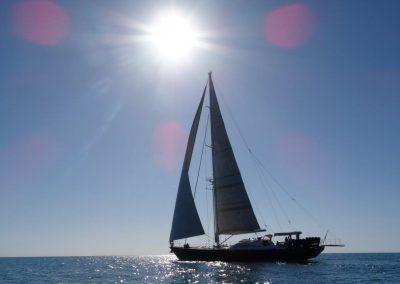 Serenity c sail yacht anton (18)