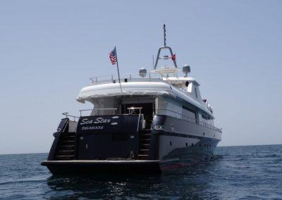 Sea Star (11)