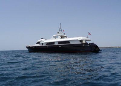 Sea Star (6)