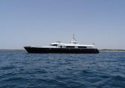 Sea Star (8)